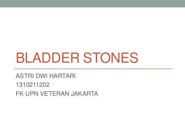 BLADDER STONES ASTRI DWI HARTARI 1310211202 FK UPN VETERAN JAKARTA