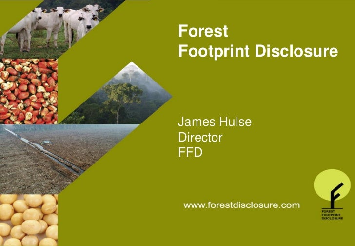 Forest                           Footprint DisclosureTHE FOREST FOOTPRINT DISCLOSURE PROJECT                              ...
