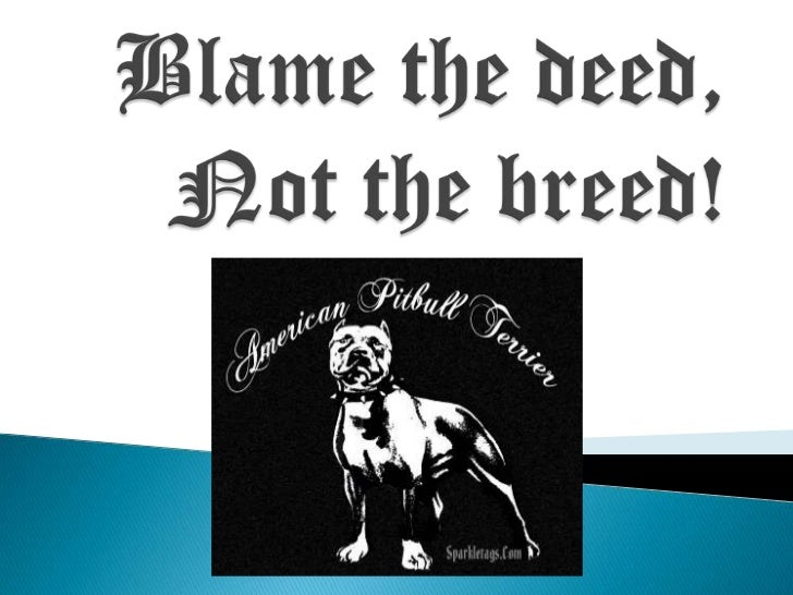 Blame the deed, Not the breed!<br />
