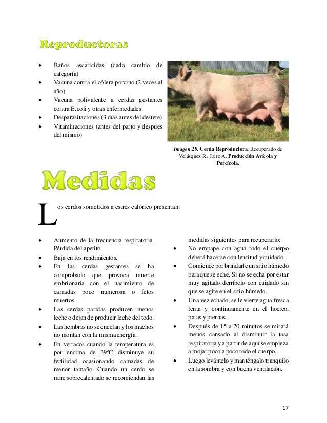 Blandon carlos modulo_aprobado