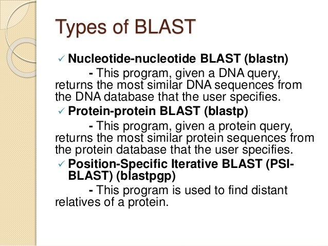 """nucleotide blast search Search the sequence in your strain against the mouse genome and  blastn:  from the blast homepage, click on """"nucleotide blast"""" (not."""