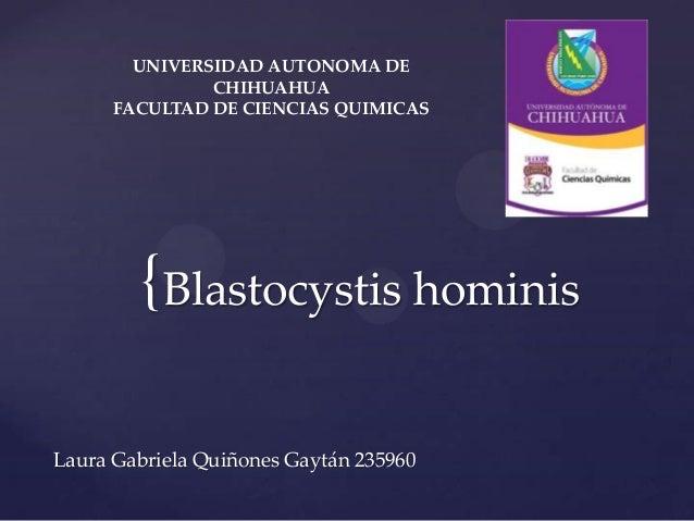UNIVERSIDAD AUTONOMA DE               CHIHUAHUA      FACULTAD DE CIENCIAS QUIMICAS        { Blastocystis hominisLaura Gabr...