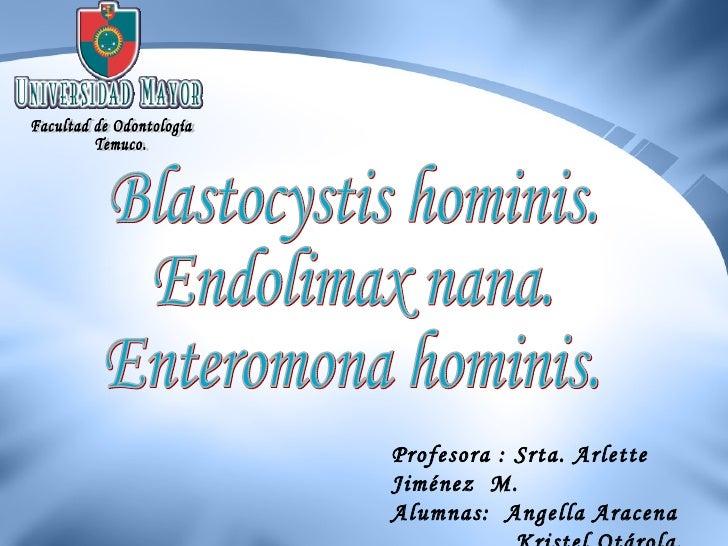 Blastocystis hominis. Endolimax nana. Enteromona hominis. Facultad de Odontología Temuco. Profesora : Srta. Arlette Jiméne...