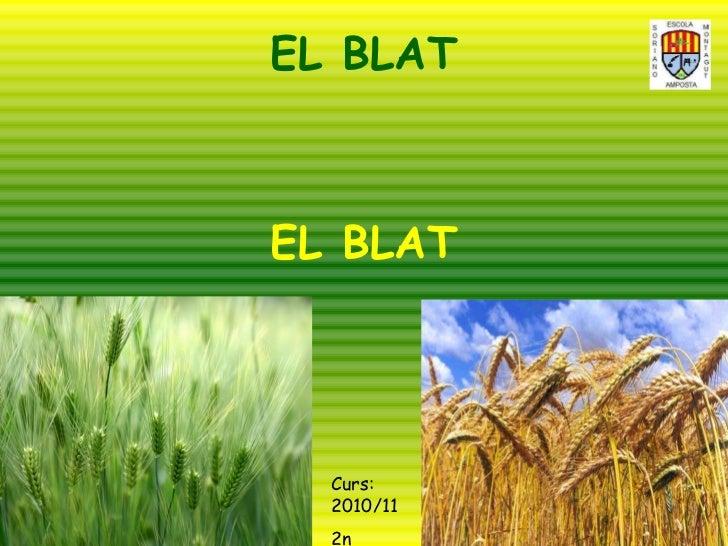 EL BLAT EL BLAT Curs: 2010/11 2n