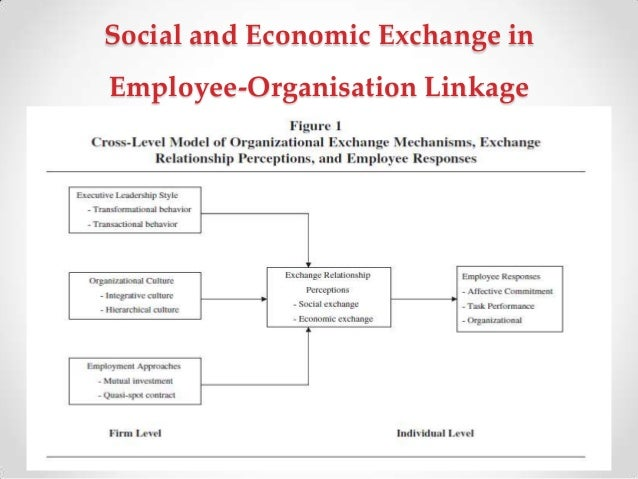 concept of social and economic justice Distributive justice is often considered not to belong to the scope of economics, but there is actually an important literature in economics that addresses normative issues in social and economic justice.
