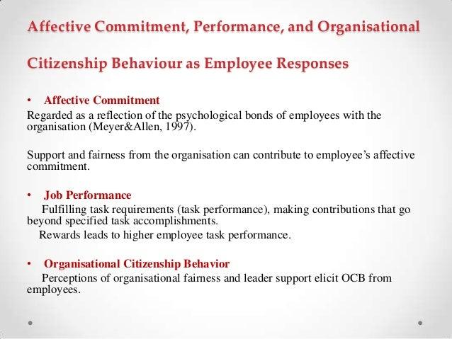 Organisational Behaviour – Ocb and Cwb