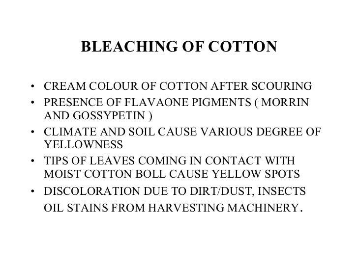 BLEACHING OF COTTON <ul><li>CREAM COLOUR OF COTTON AFTER SCOURING </li></ul><ul><li>PRESENCE OF FLAVAONE PIGMENTS ( MORRIN...