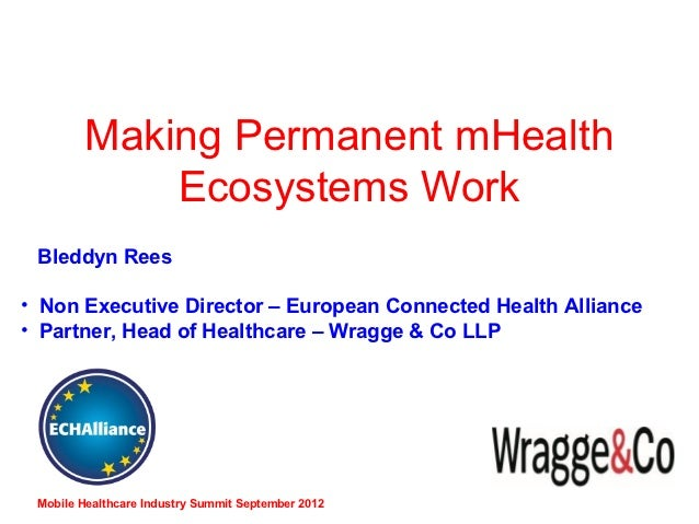 Making Permanent mHealth            Ecosystems Work Bleddyn Rees• Non Executive Director – European Connected Health Allia...