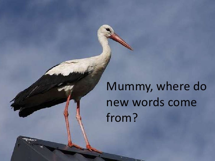 Mummy, where do new words come from?<br />