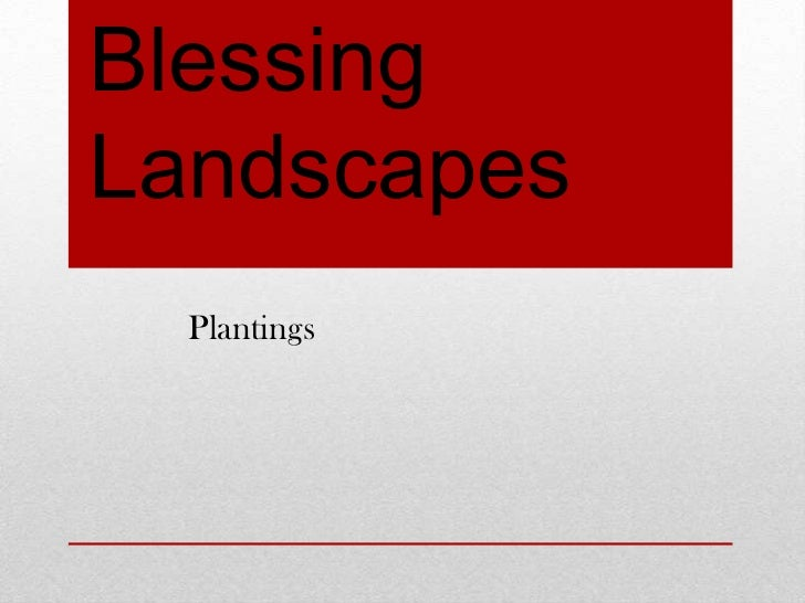 BlessingLandscapes  Plantings