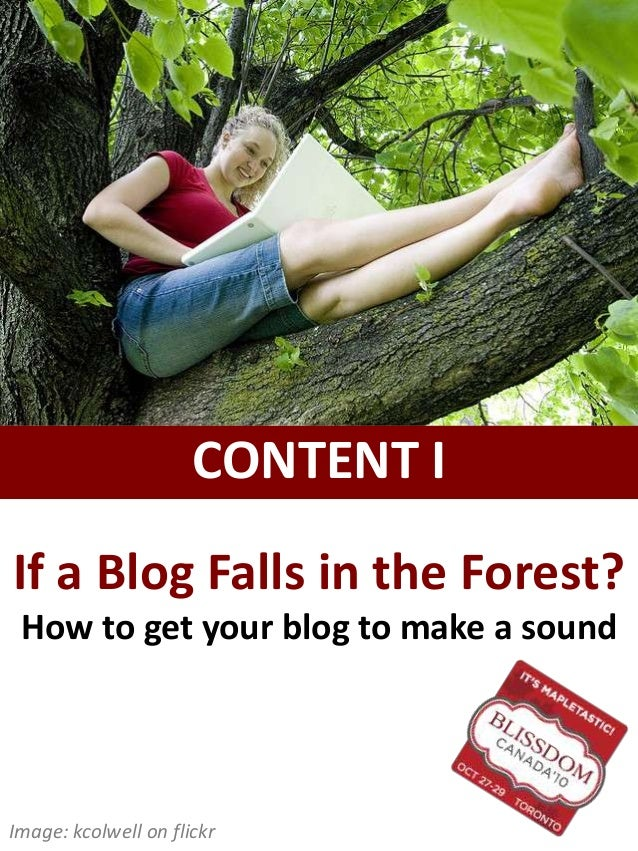 If a Blog Falls in the Forest? How to get your blog to make a sound CONTENT I Image: kcolwell on flickr