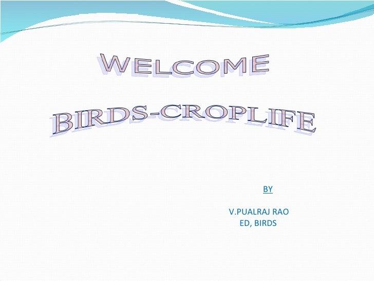 BYV.PUALRAJ RAO   ED, BIRDS