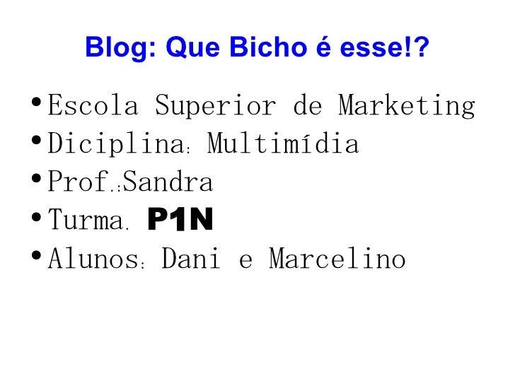 Blog: Que Bicho é esse!? <ul><li>Escola Superior de Marketing </li></ul><ul><li>Diciplina: Multimídia </li></ul><ul><li>Pr...