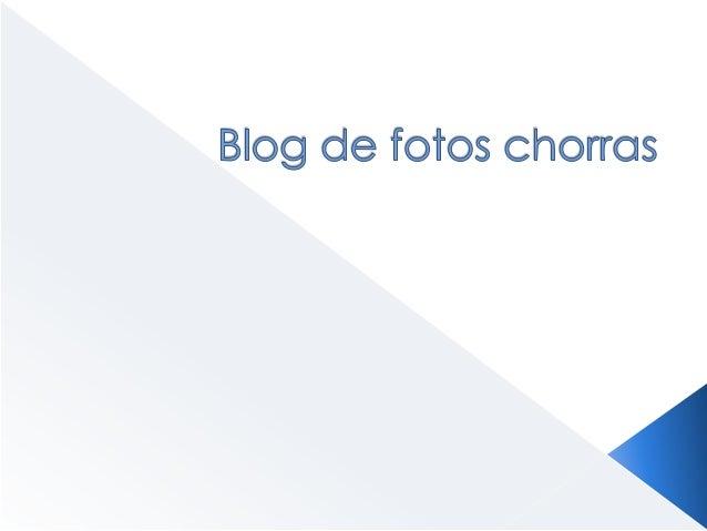 Blog de fotos chorras