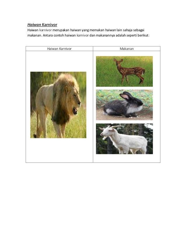 Haiwan KarnivorHaiwan karnivor merupakan haiwan yang memakan haiwan lain sahaja sebagaimakanan. Antara contoh haiwan karni...
