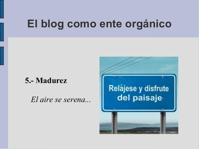 5.- MadurezEl aire se serena...El blog como ente orgánico
