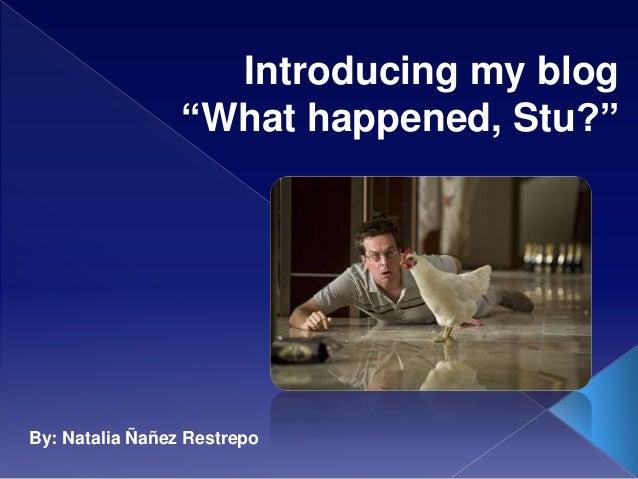"Introducing my blog ""What happened, Stu?"" By: Natalia Ñañez Restrepo"