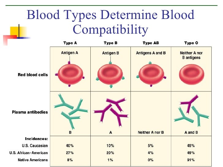 blood type personality love match Find out if your blood type matches the personality traits associated with because you're honest and caring at heart and love to make people.