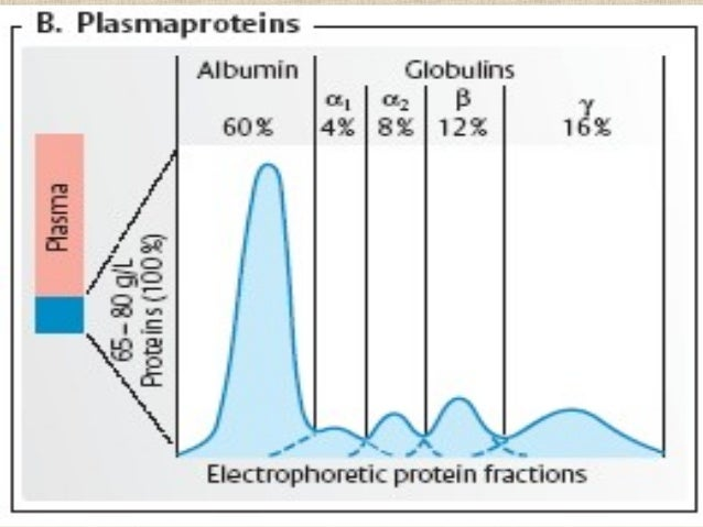 salt fractionation of plasma proteins biology essay A two-step laboratory exercise in biochemistry is proposed, comprising salt fractionation of plasma proteins and protein quantification this exercise targets mainly undergraduate students, namely.