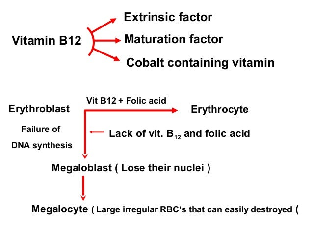 b12 and folic acid relationship problems