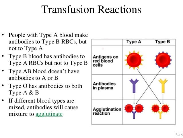 blood type reaction Immunization (ie, the production of antibodies in response to antigen) against  blood group antigens in humans can occur as a result of pregnancy, blood.