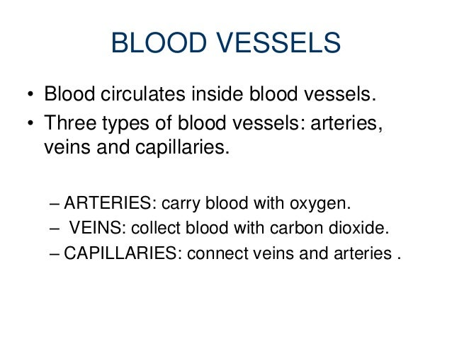a description of blood as a fluid substance that circulates in the arteries and veins of the body Blood is a fluid substance that circulates in the arteries and veins of the body blood is bright red or scarlet when it has been oxygenated in the lungs and.