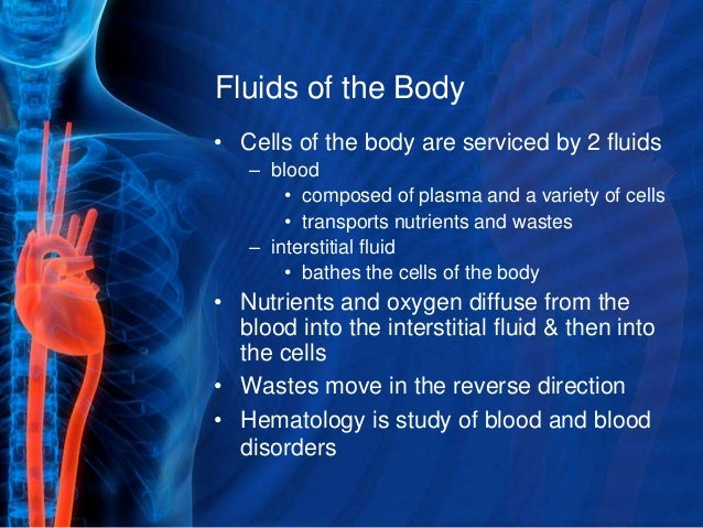 Blood and its components Slide 3
