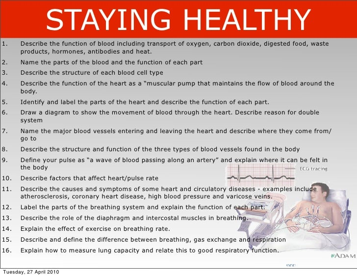 STAYING HEALTHY 1.    Describe the function of blood including transport of oxygen, carbon dioxide, digested food, waste  ...