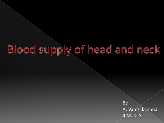Blood supply of head and neck Slide 2