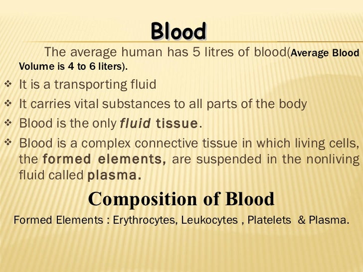 types of white blood cells and their functions pdf