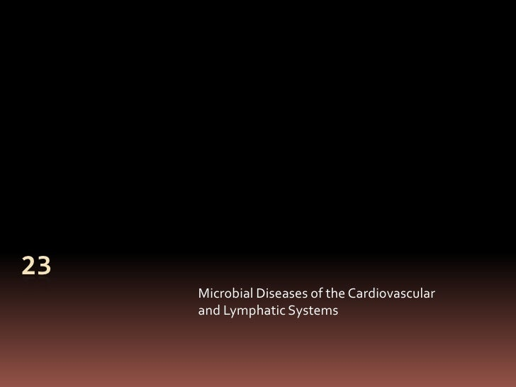 23     Microbial Diseases of the Cardiovascular     and Lymphatic Systems