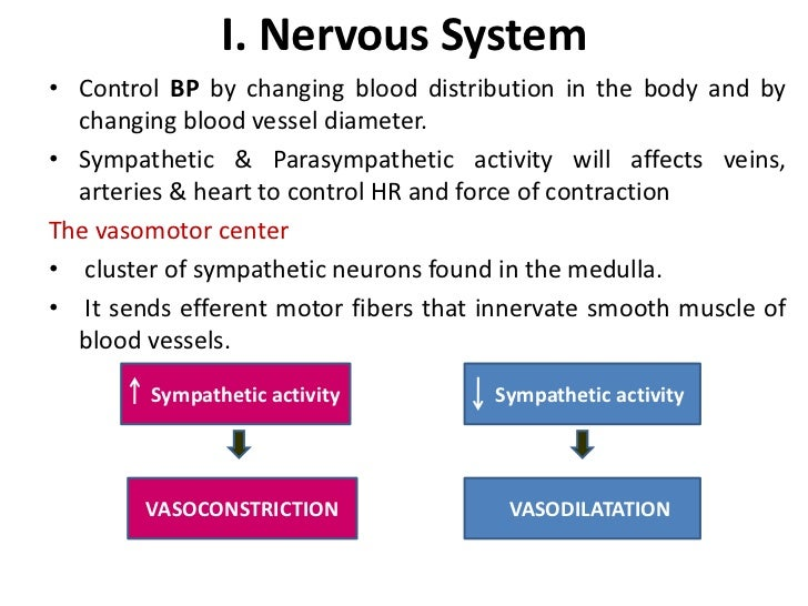 Blood pressure mechanism br 4 fandeluxe Choice Image