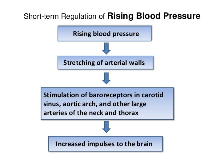Blood pressure mechanism
