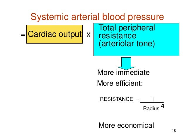 Exercise on arterial pressure and vascular resistance