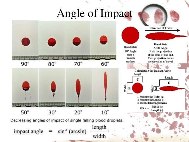 blood spatter analysis diagram of interior of 2002 dodge caravan diagram of angle of impact