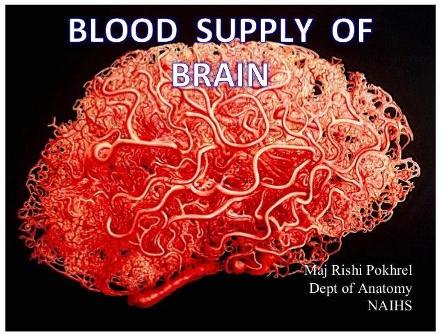 Maj Rishi Pokhrel Dept of Anatomy NAIHS