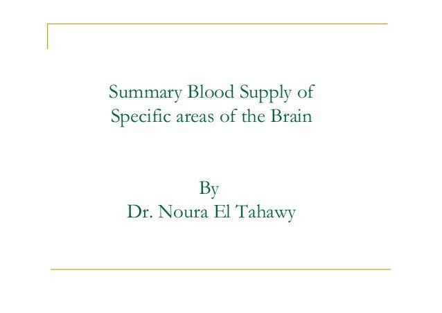 blood supply of the brain pdf