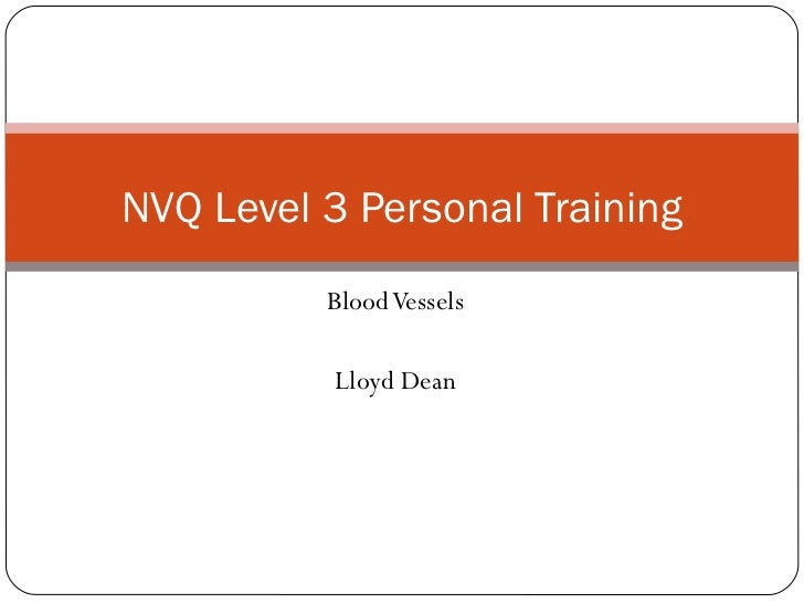 Blood Vessels Lloyd Dean NVQ Level 3 Personal Training