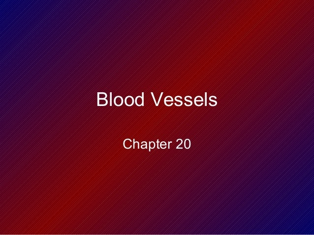 Blood Vessels Chapter 20