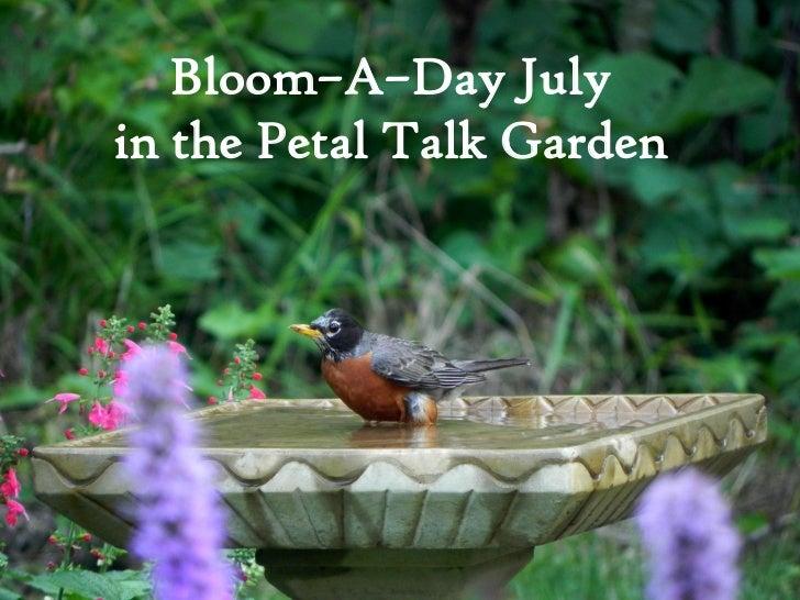 Bloom–A–Day Julyin the Petal Talk Garden