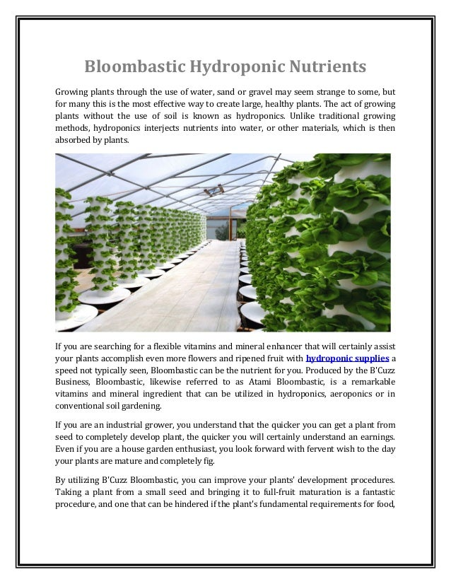 Bloombastic Hydroponic Nutrients  Growing plants through the use of water, sand or gravel may seem strange to some, but  f...