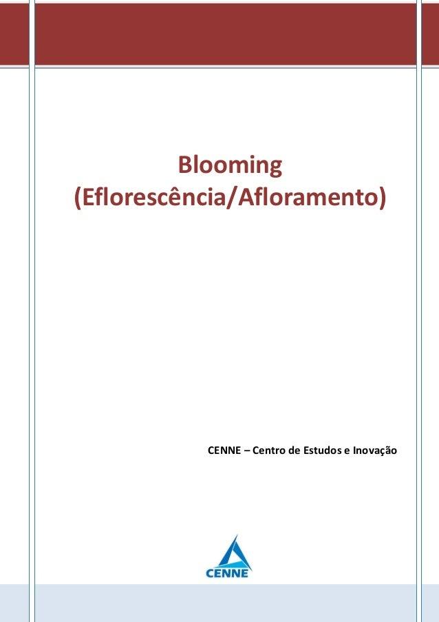 Blooming (Eflorescência/Afloramento) CENNE – Centro de Estudos e Inovação