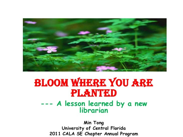 Bloom Where You Are Planted<br />--- A lesson learned by a new librarian<br />Min Tong<br />University of Central Florida<...