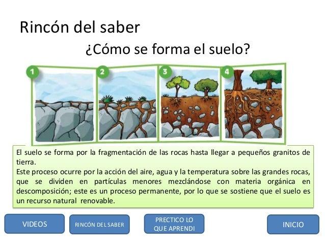 Bloque 1 y 2 for Como estan formados los suelos
