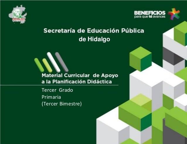 de Hidalgo  Tercer Grado Primaria (Tercer Bimestre)