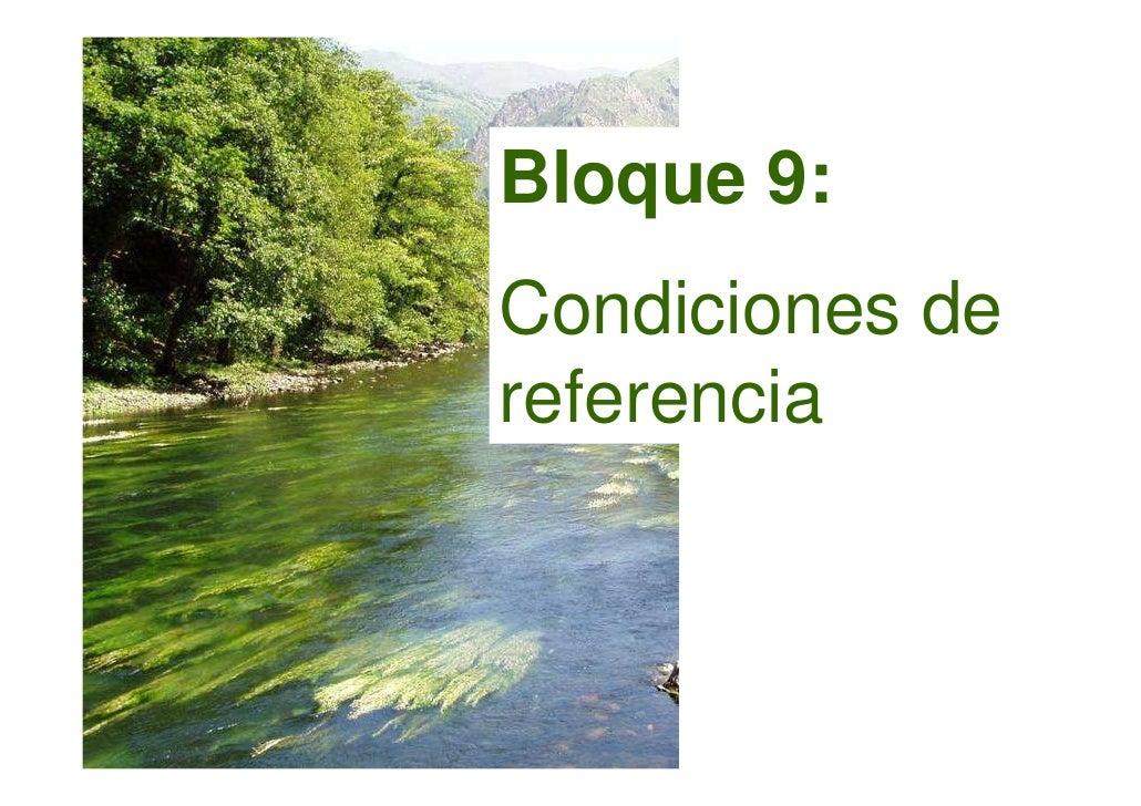 Bloque 9: Condiciones de referencia