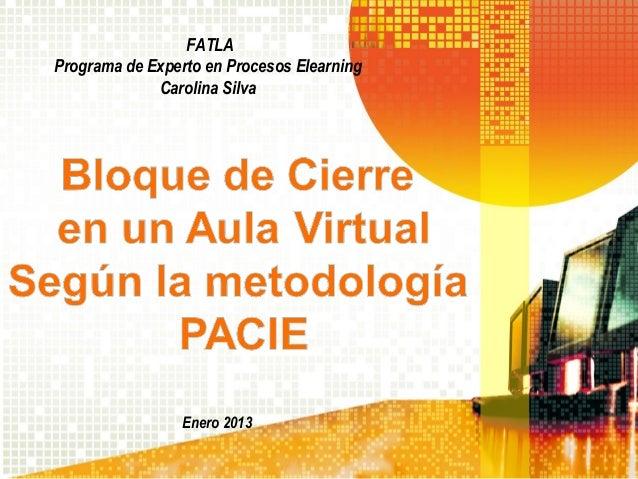 FATLAPrograma de Experto en Procesos Elearning             Carolina Silva                 Enero 2013