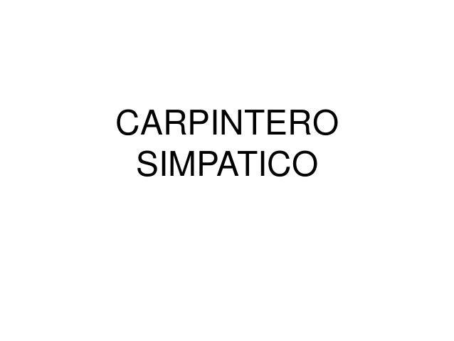 CARPINTERO SIMPATICO