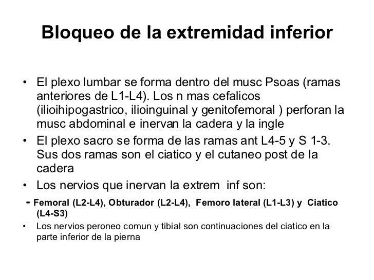 Bloqueo de la extremidad inferior <ul><li>El plexo lumbar se forma dentro del musc Psoas (ramas anteriores de L1-L4). Los ...