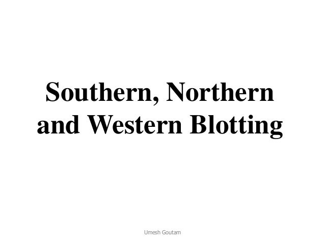Southern, Northern and Western Blotting Umesh Goutam